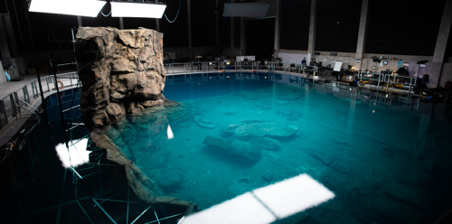 Vlaanderen specialist in onderwaterfilmopnames