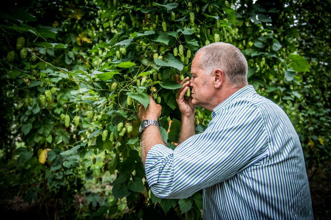 Tim Lord, hop farmer Hop Products Australia