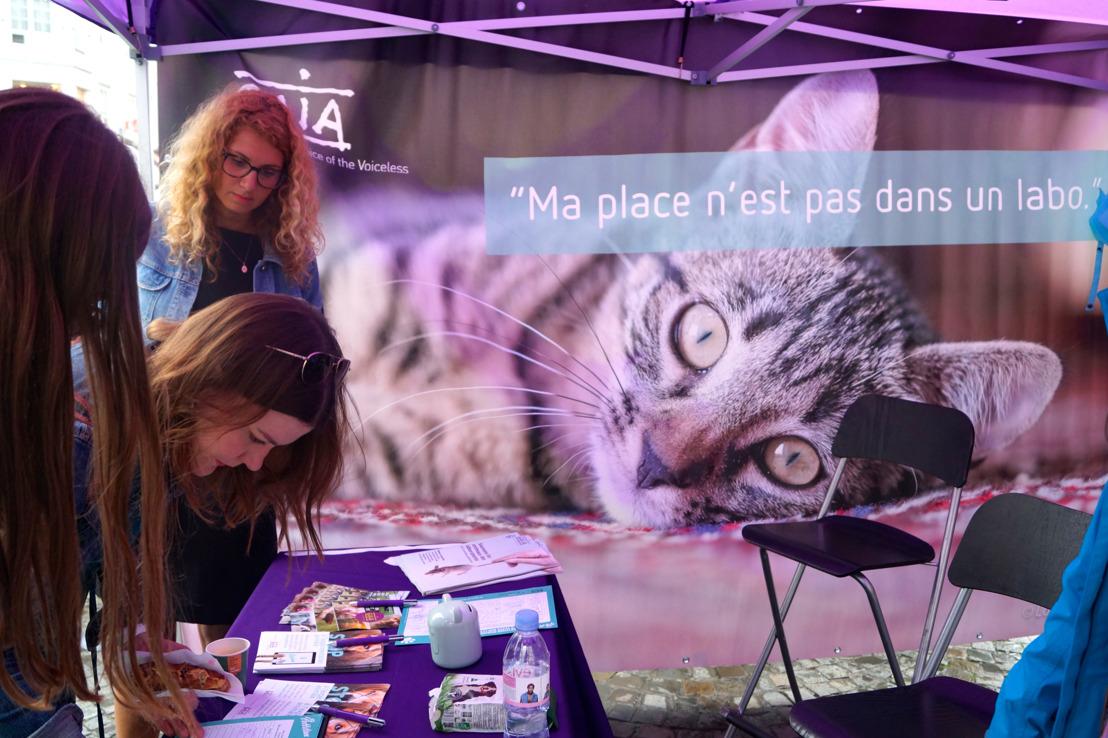 Sondage IPSOS : 91 % des Liégeois veulent faire interdire les tests sur les chiens et les chats