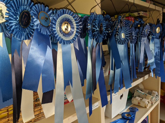 Therapeutic Riding of Tucson semester ends with annual horse show