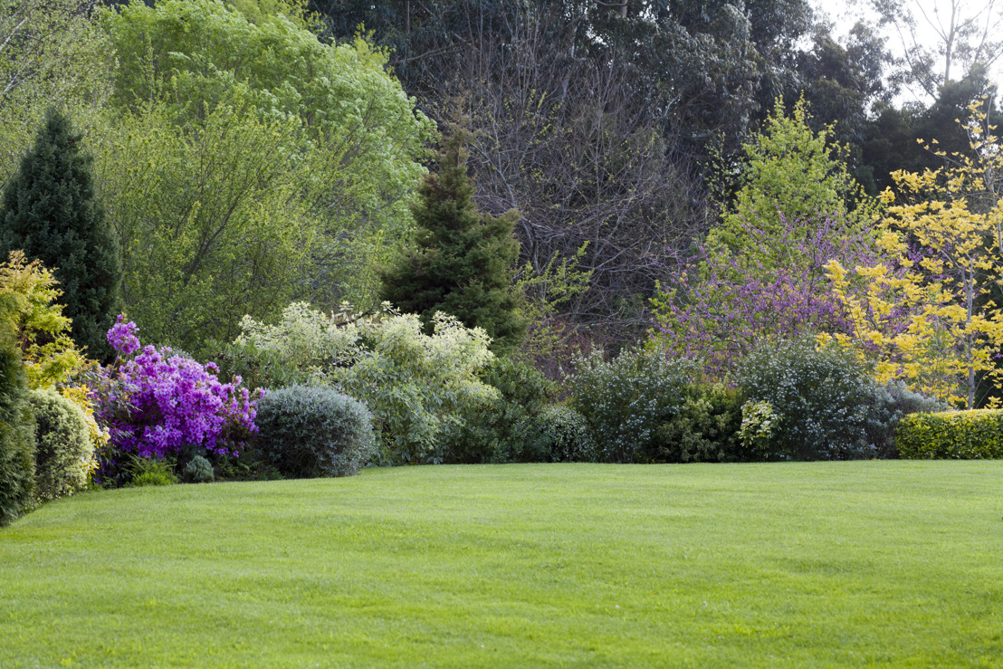 "The experts at Pike Nurseries give ""March""ing orders for a lush lawn"