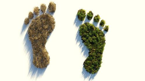 Lidl stuurt klimaatexperts naar leveranciers om totale CO2-uitstoot te verminderen