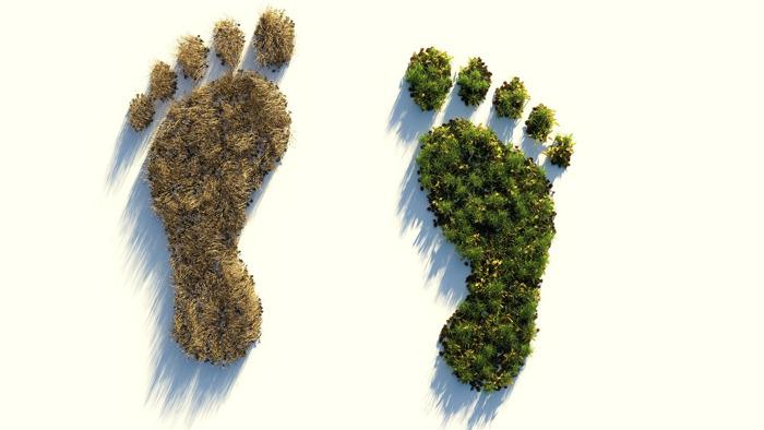 Lidl envoie des experts du climat chez ses fournisseurs pour réduire les émissions de CO2