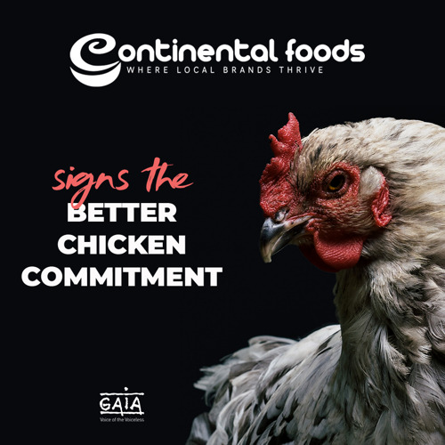 PRESS RELEASE // BROILER CHICKENS: CONTINENTAL FOODS COMMITS TO COMBATTING THE WORST PRACTICES OF FARMING AND SLAUGHTERING CHICKENS