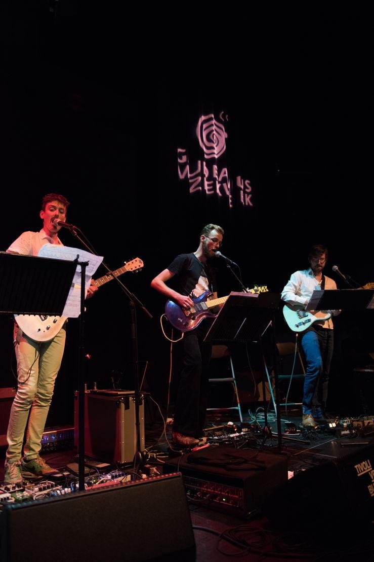 Zwerm elektrisch gitaarkwartet - Foto: Anna van Kooij