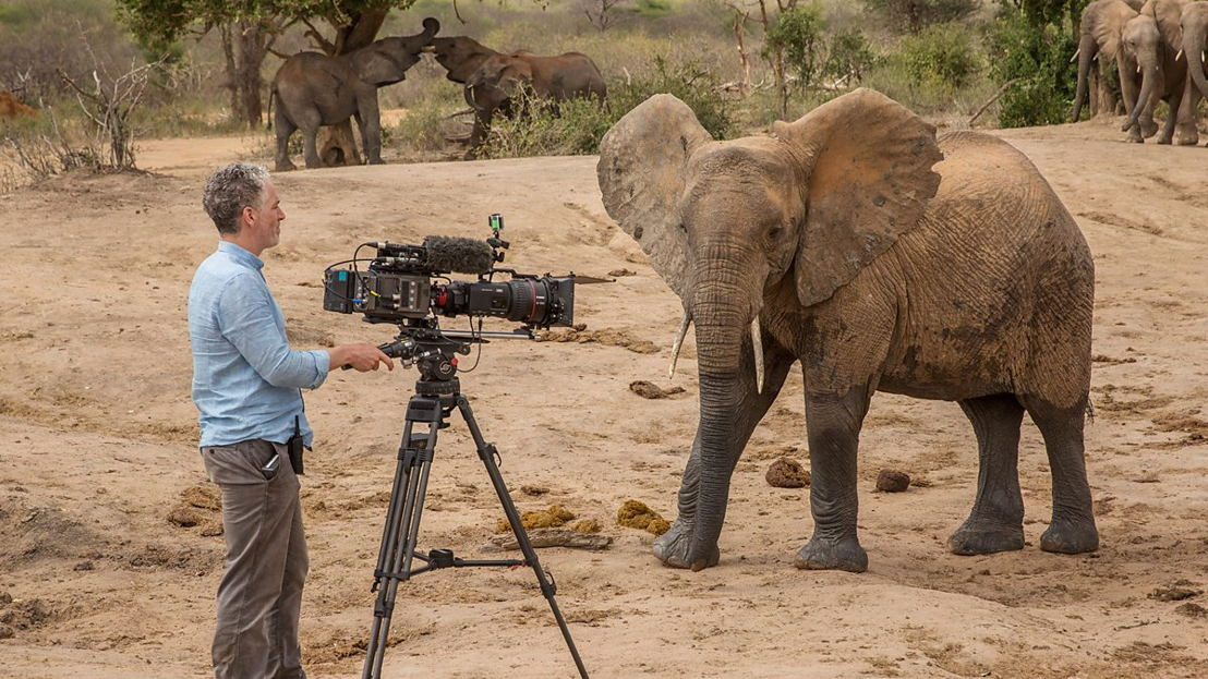 Elephant Family & Me - (c) BBC