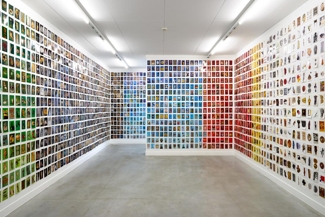 Oriol Vilanova : une réflexion sur l'art de camoufler au musée M