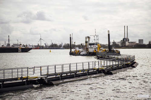 The Flemish government, Port of Antwerp and SeReAnt together improve the water quality at the Port of Antwerp