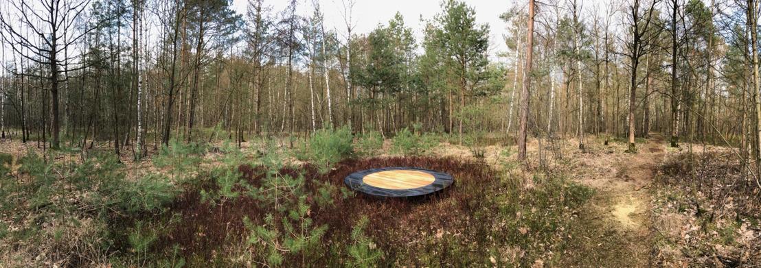 Ook Bosland heeft zijn eerste natuuroase om in te bosbaden