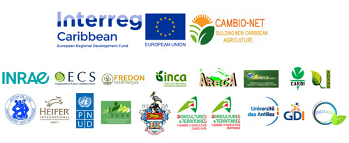 CambioNet project seeks to build a new approach to agriculture in the Caribbean/Amazon region