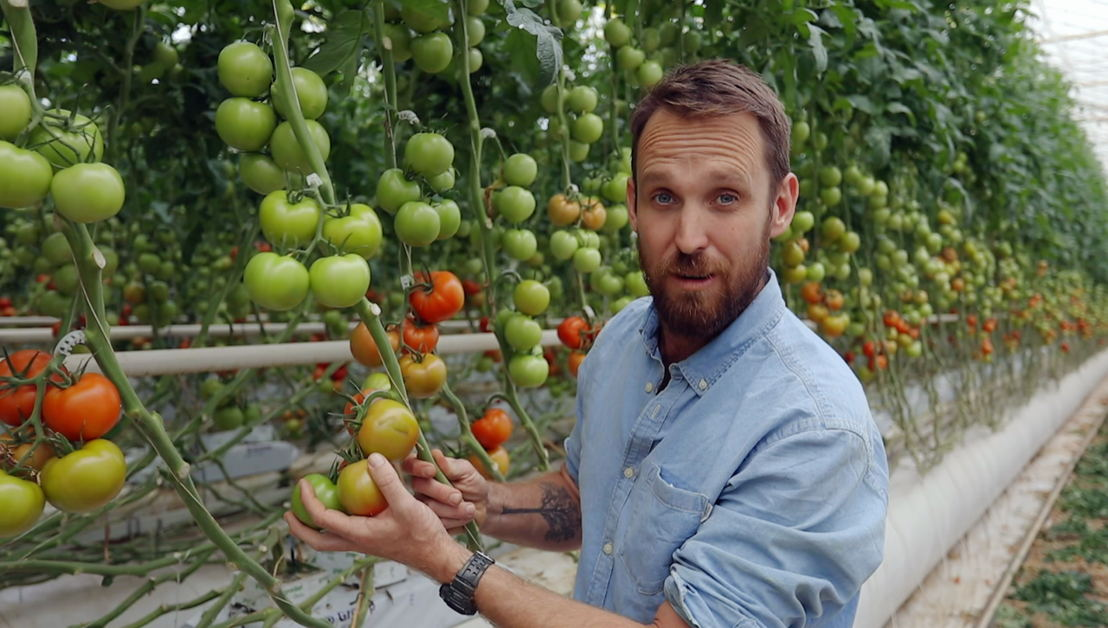 "Paul West investigates large-scale tomato farming for ""Catalyst: Feeding Australia""."