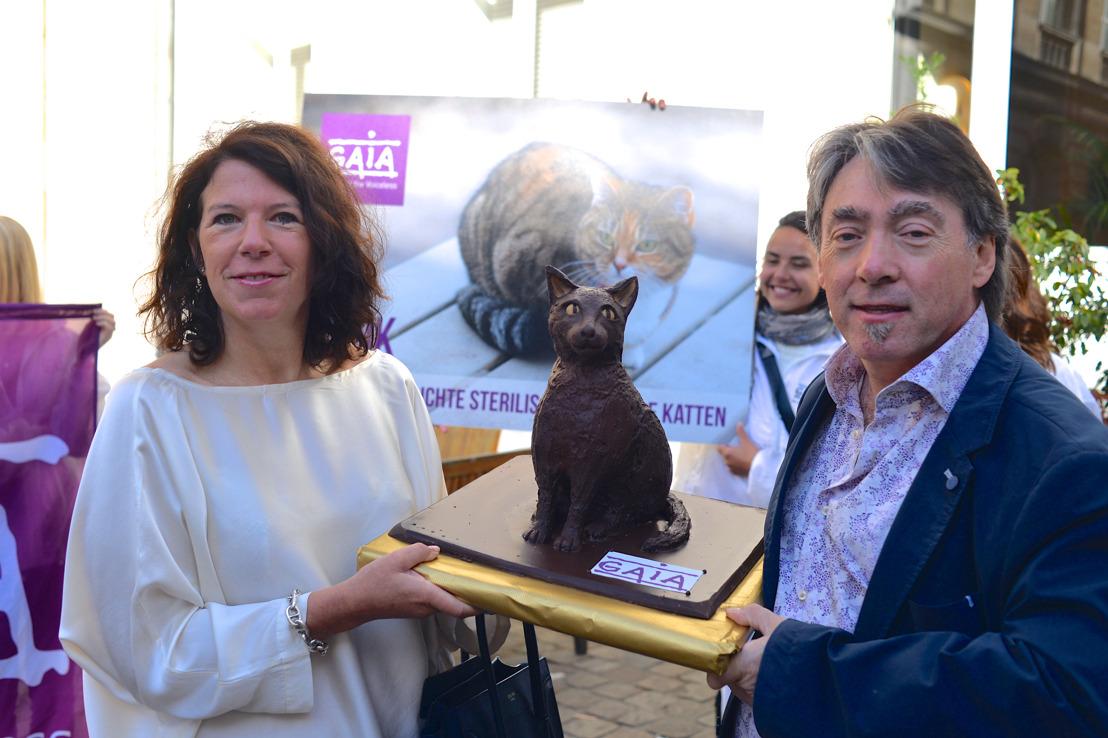 De Brusselse regering keurt de verplichte sterilisatie van alle katten goed