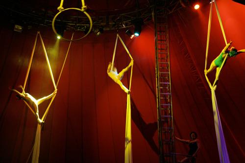 Vlaamse Regering zet circuskunst steviger in het zadel