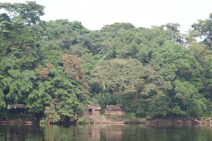 Salonga National Park: It is Africa's largest tropical rainforest reserve covering 36,000 km²