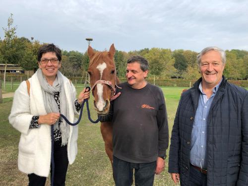 Paardje Djapa geniet van mooi pensioen op Provinciaal domein De Brielmeersen