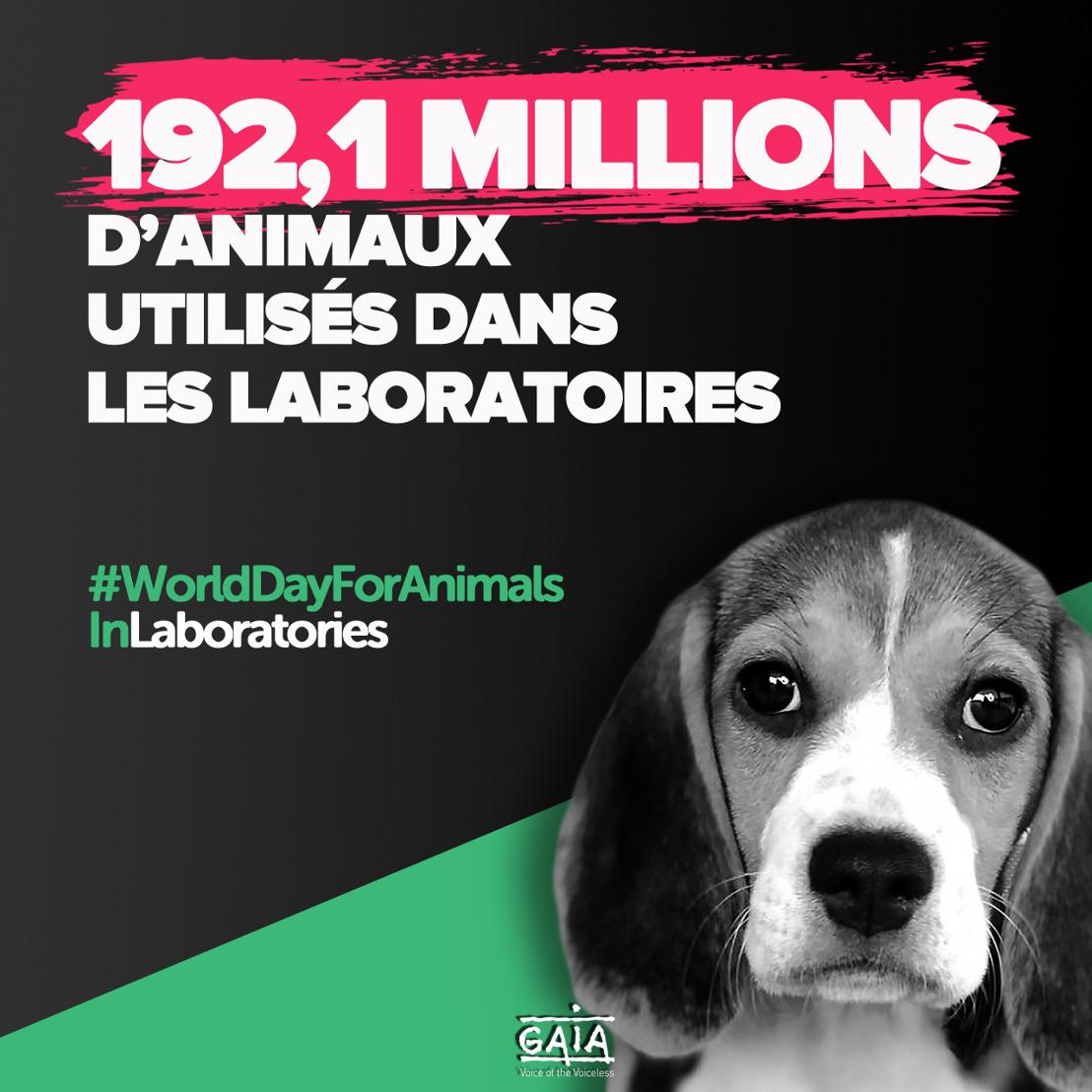 COMMUNIQUÉ DE PRESSE // Nouveaux chiffres : 192,1 millions d'animaux utilisés dans les laboratoires