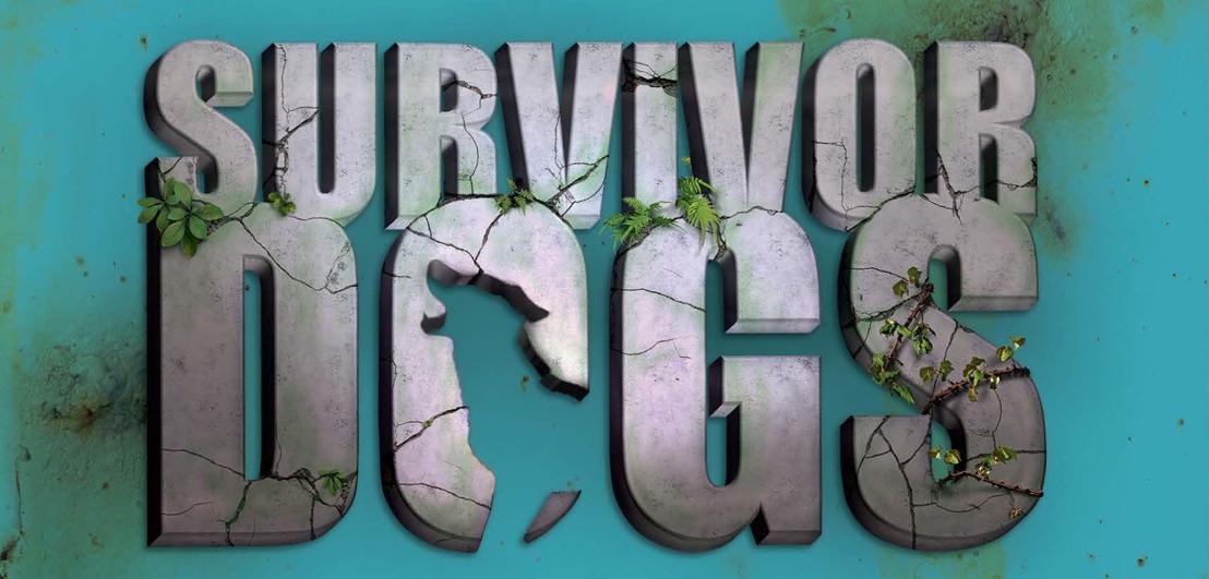 Survivor Dogs. Een verborgen vijand - Erin Hunter