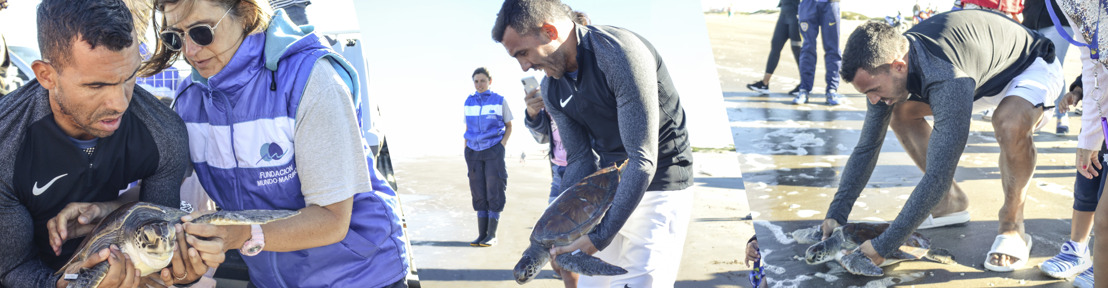 La faceta ecológica de Carlitos Tévez: reinsertó una tortuga marina rescatada en San Clemente