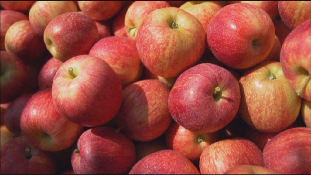 Koppen XL: Een appel elke dag