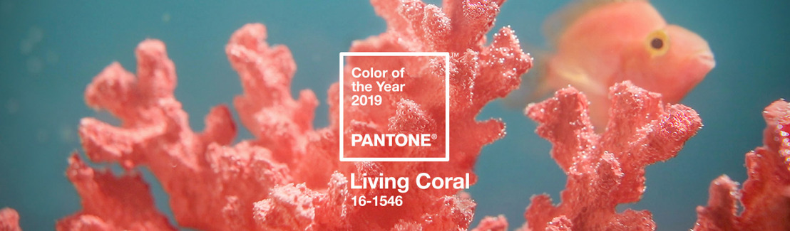 Pantone '19: feel like a fish in the water with the prettiest shades of living coral