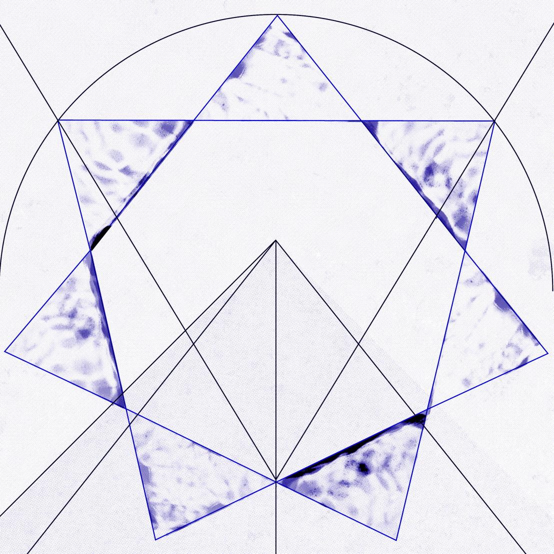 Radouan Mriziga - 7 - 17>20/5 © Maïte Álvarez