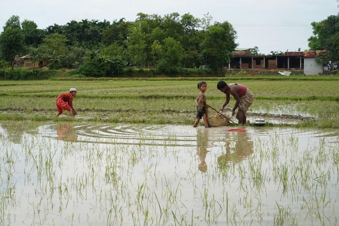 A Rohingya father and his children search for fish and crabs in rice paddies near to Kutupalong camp. With over 626,000 refugees, the Kutupalong-Balukhali mega camp is now the biggest refugee camp in the world, with people living in extremely overcrowded and underresourced conditions. One year on, the UN-led response is only around 31 % funded, with healthcare a mere 17.5 percent funded. Many refugees report that they do not receive enough food rations, and try to supplement their rice and dhal diet by other means. Photographer: Dalila Mahdawi