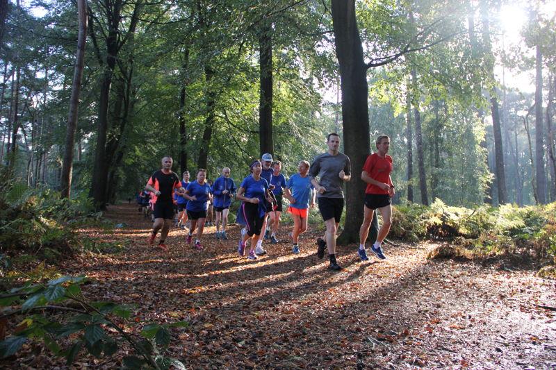 Week van het Bos 2016 (c)Regine Van Allemeersch