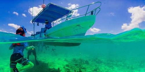 World Bank Blue Economy Tourism Survey