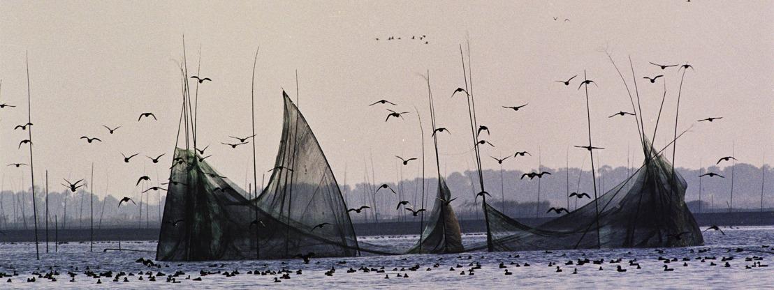 Des contrôles des importations dans certains États membres clés de l'UE ne permettent pas de faire obstacle aux produits de la mer d'origine illicite