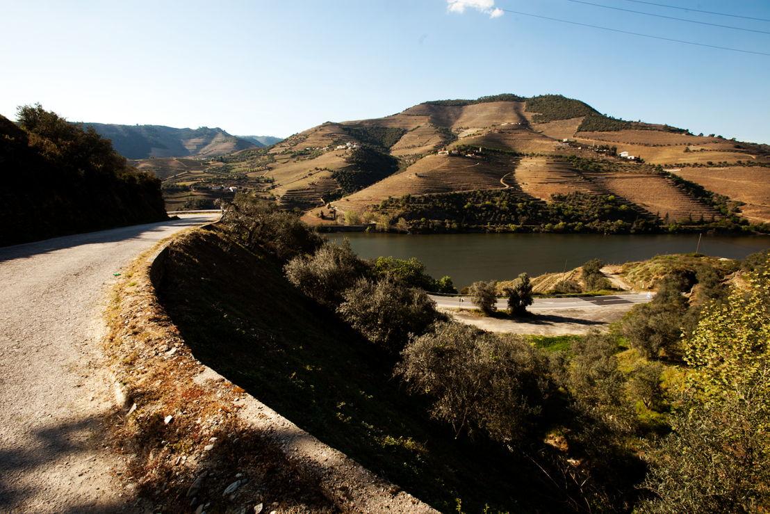 La N-222, entre Peso da Régua et Pinhão, donne sur des collines en forme de terrasses