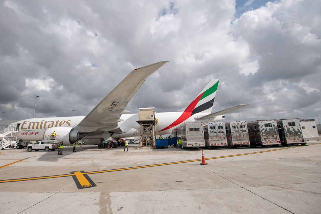 Emirates SkyCargo flew close to 100 horses to Miami for the Longines Global Championship Tour