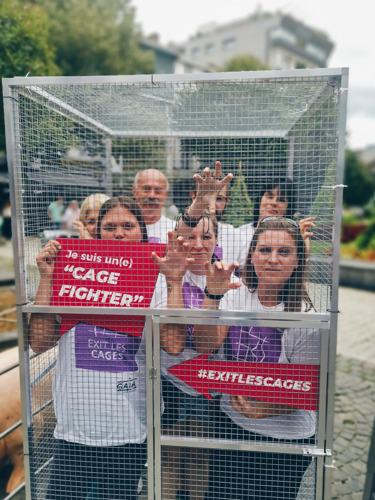 Des dizaines de « Cage Fighters » s'enferment en cage à Liège