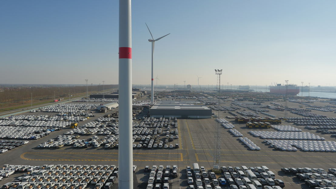 De windturbines van Eneco die nu al in Zeebrugge staan