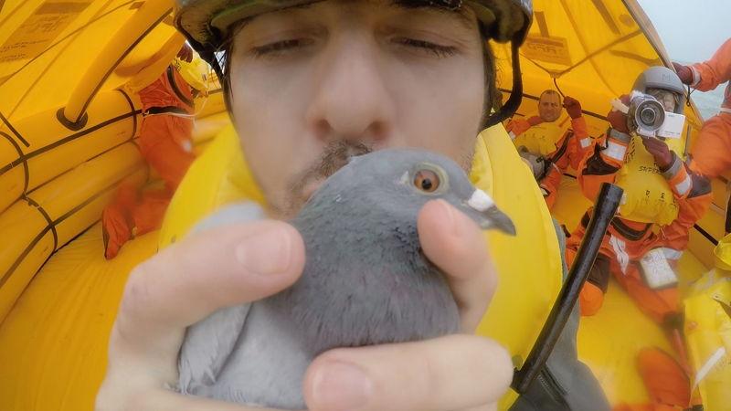 Aflevering 6: de duif-navigatie