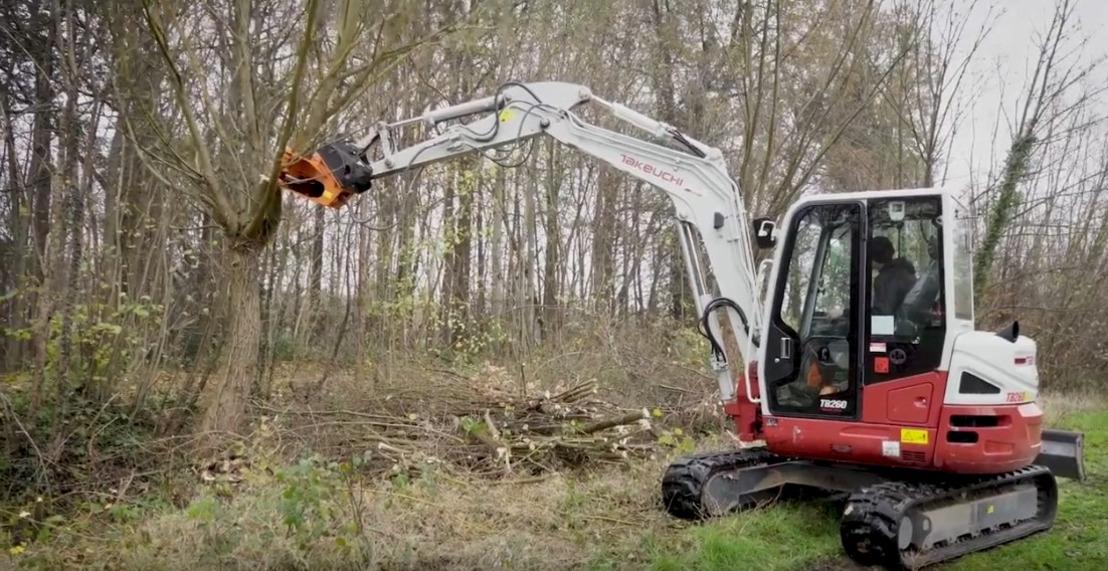 Breed partnerschap investeert in het beheervan knotbomen en houtkanten in Zemst