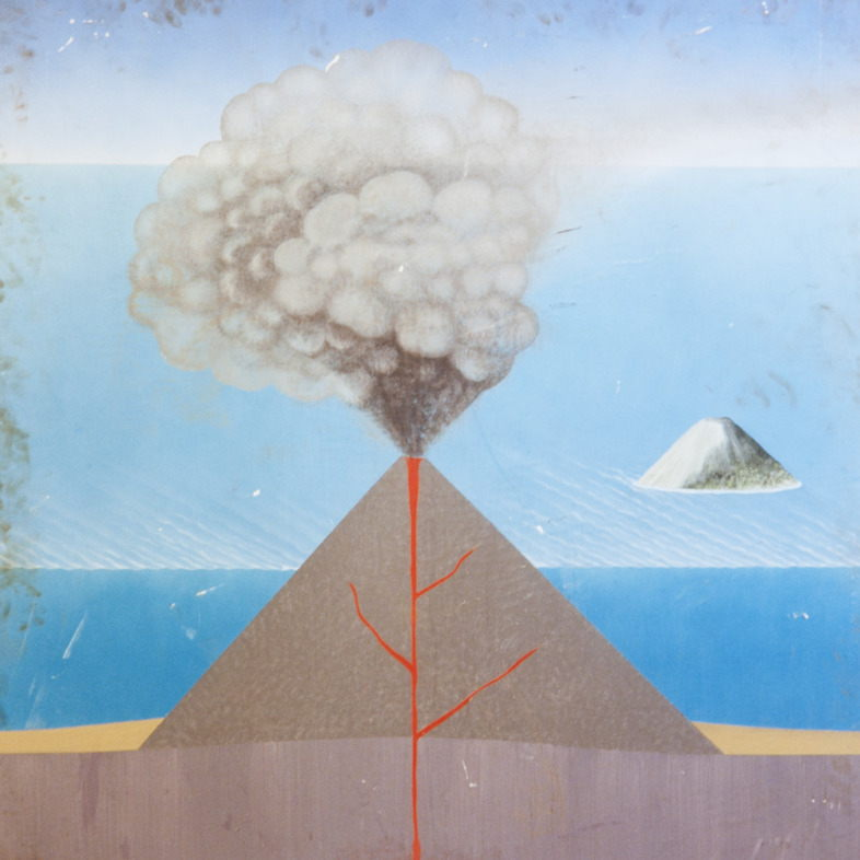 Yto Barrada, Untitled (painted educational boards found in Natural History Museum, Azizal, Morocco), 2013-2015 | Pace Gallery London
