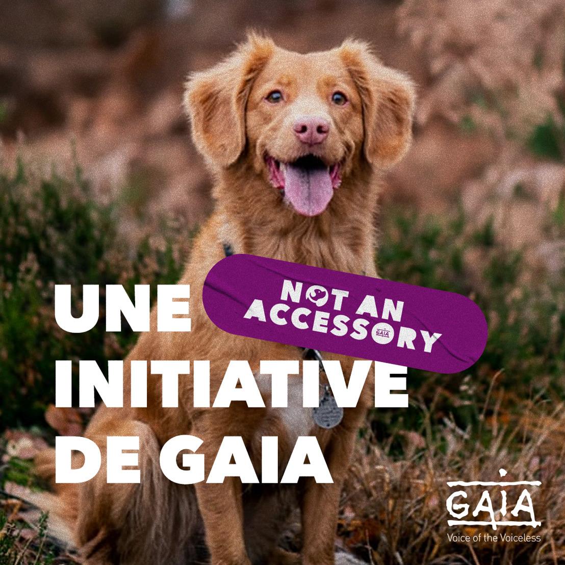 Virginie Morobé, Noémie Happart et Nathalie Hantson prennent position contre l'achat impulsif d'animaux
