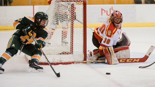 WHKY: Pandas, Dinos lead all-star charge
