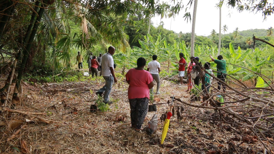 OECS and CCRIF SPC Complete Flood Mitigation Works in the Malgretoute Community, Saint Lucia