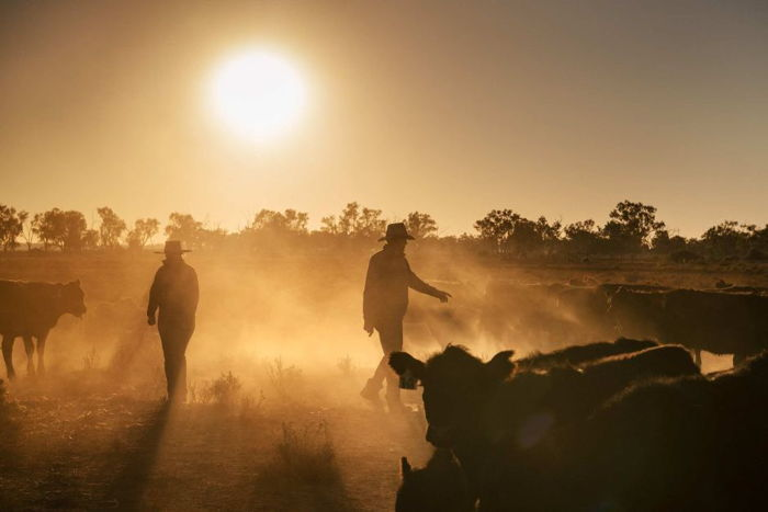 Preview: ABC Bands Together with Farmers in Parkes