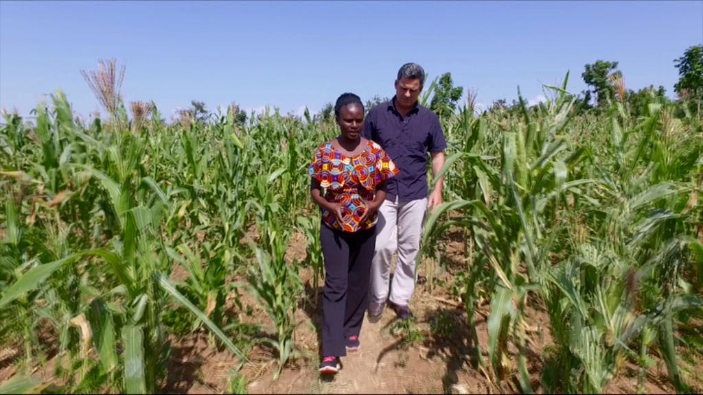 Matt Brown & Caroline in the cornfields - ABC's Foreign Correspondent (photo credit: Cathy Scott)