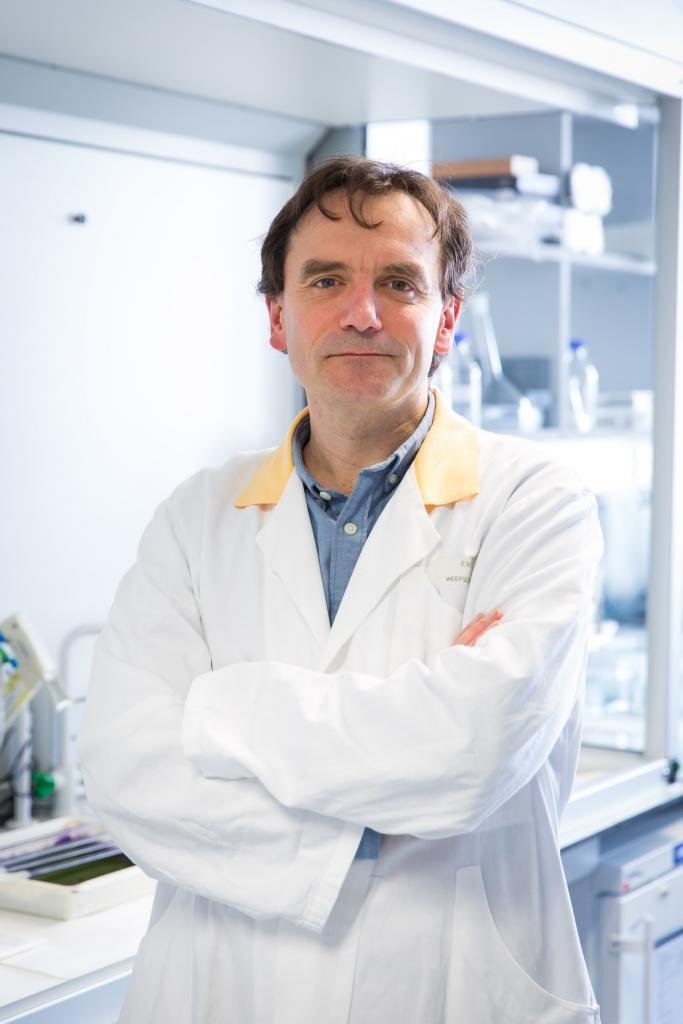 prof. dr. Joris Vermeesch