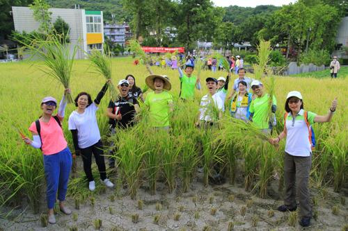 宏碁挺友善農作 大力認購八千公斤稻米