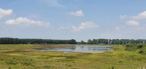 Elf partners zetten zich in voor verdere ontwikkeling Grenspark Groot Saeftinghe