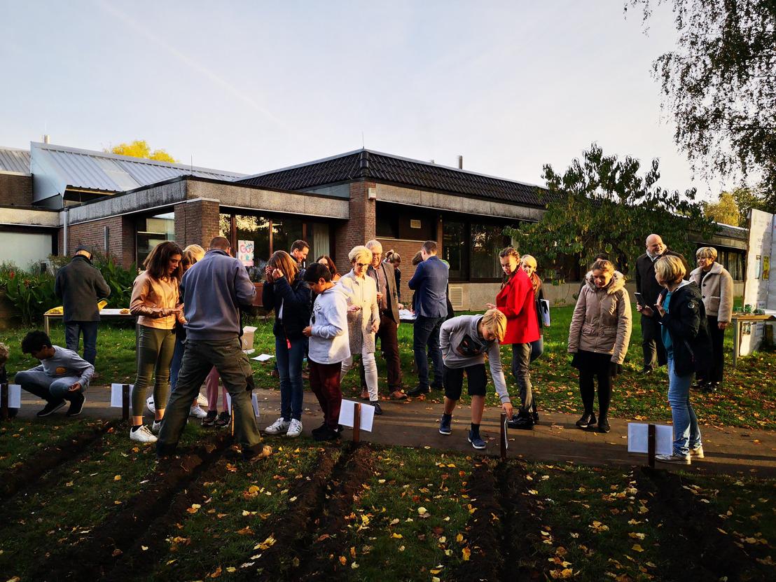 Leerlingen Middenschool Keerbergen planten 550 bloembollen