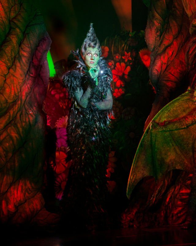 Shani Hadjian as the Wicked Witch of the West<br/>Photo credit: DANIEL A. SWALEC
