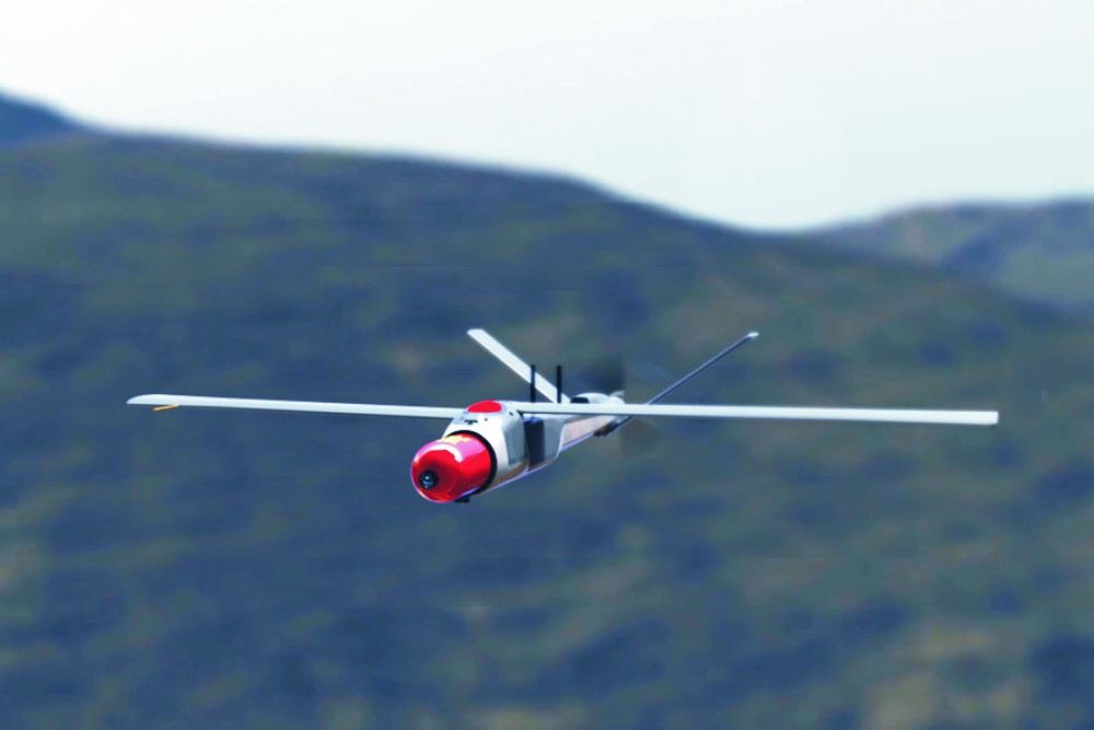 MSP Warbfly System