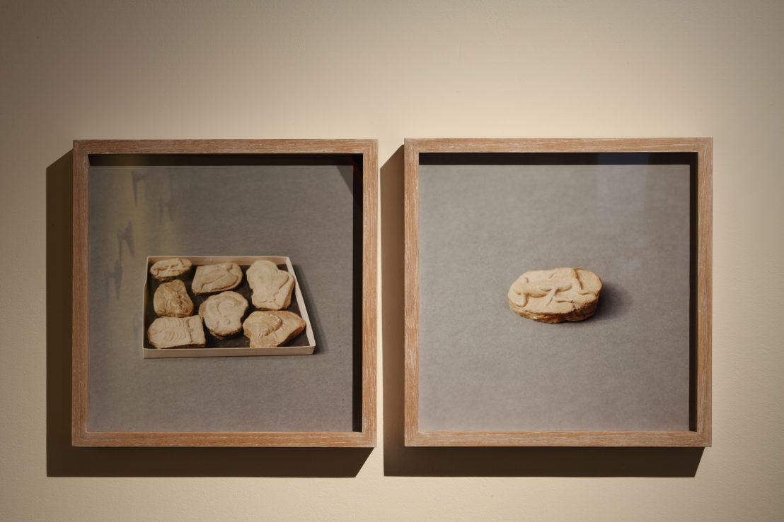 Untitled (Beringer's Lying Stones), 2014-2015, © Natural History Museum, Londen. Courtesy the artist; Sfeir-Semler Gallery, Hamburg/Beirut<br/>Foto (c) Dirk Pauwels