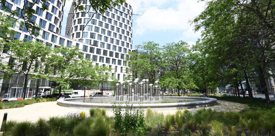 "Vandaag 11 juni is Brussel ""tree city"""