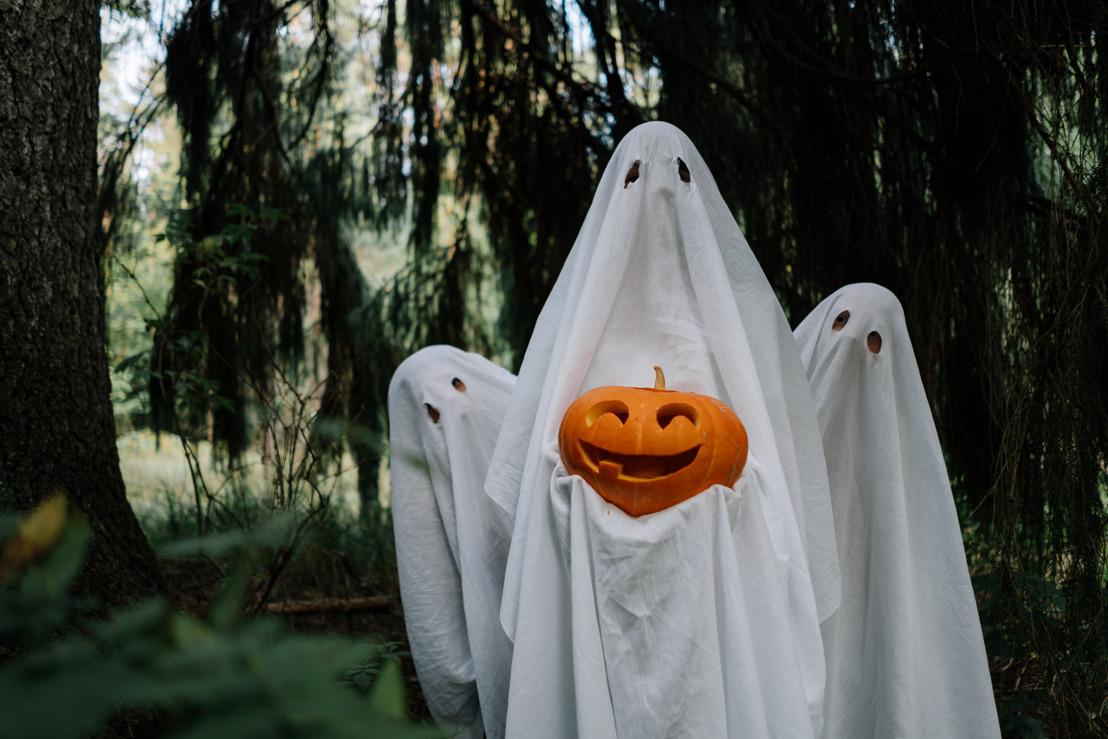 T-Rex, Cruella de Vil, Juego del Calamar y otros disfraces que serán la sensación para este Halloween